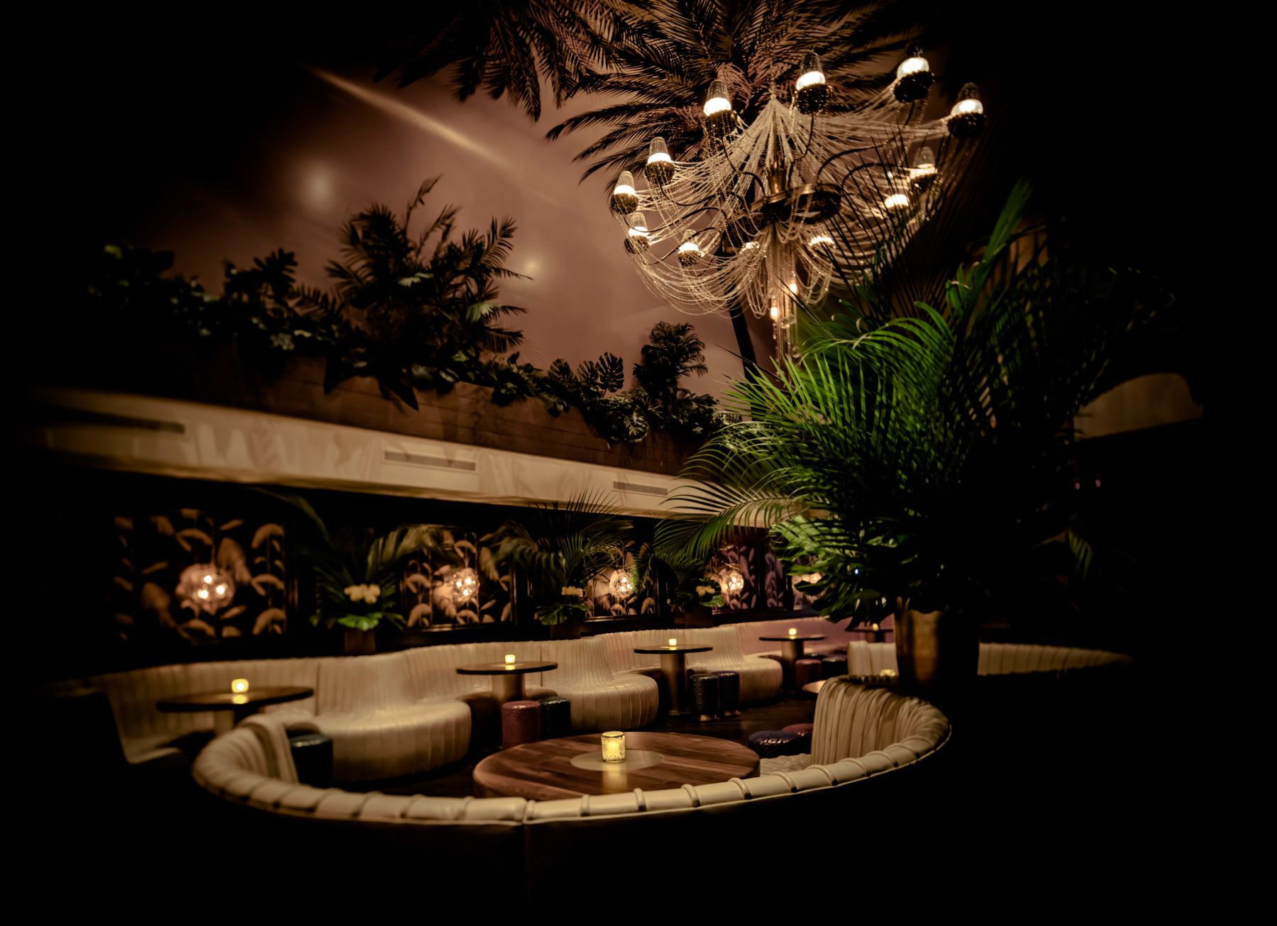 Interior of Number 8 nightclub, with banquets, floral wall paper and palm trees