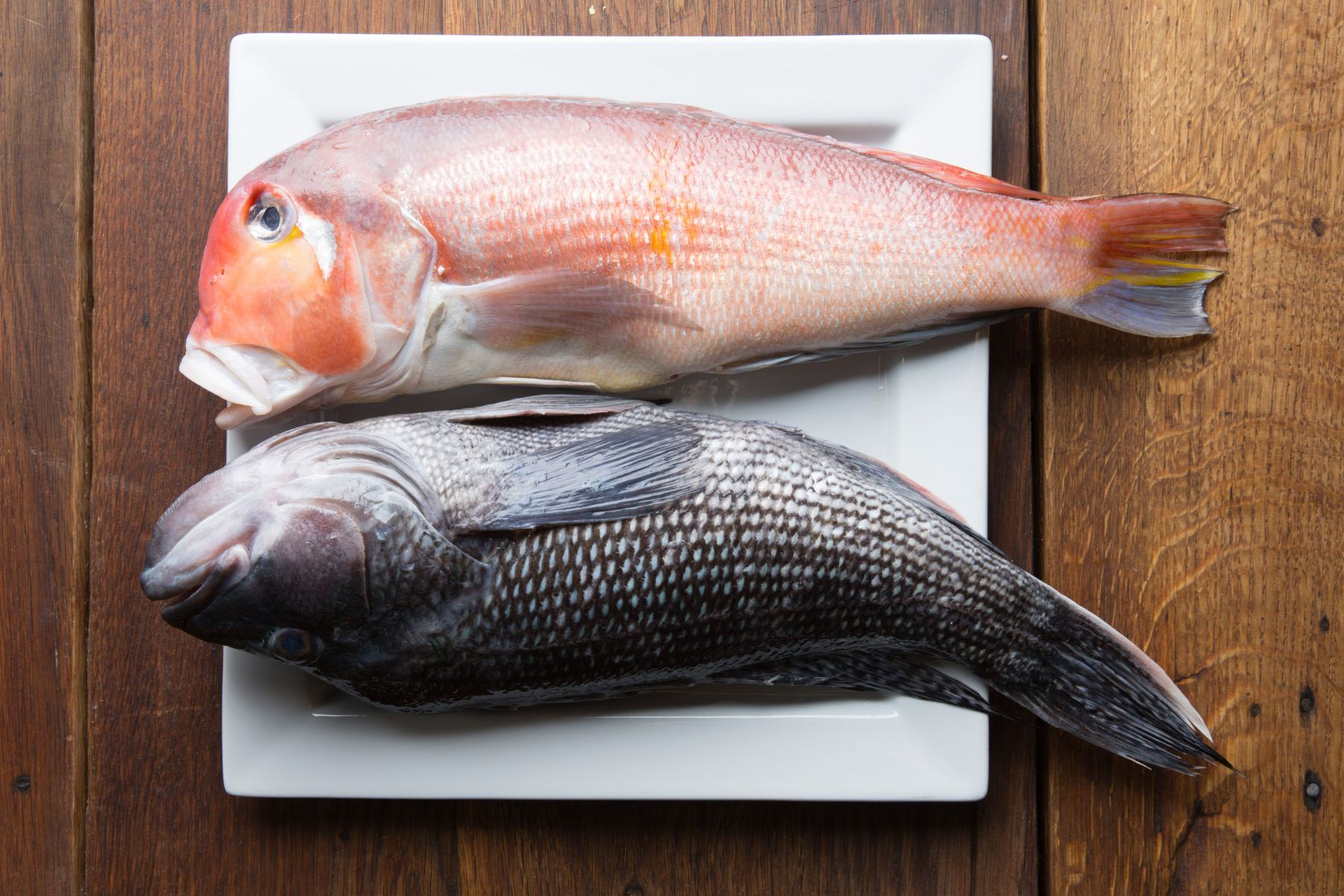 Two whole fish on a plate