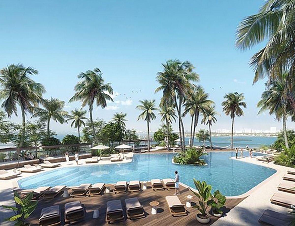 The Pool and Palm Trees at Natiivo Miami