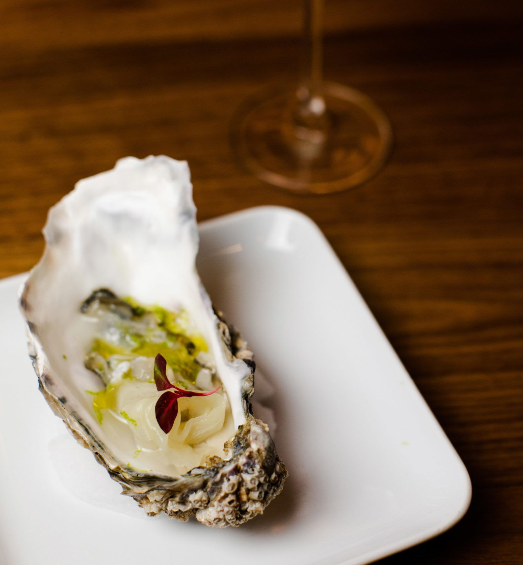 Large Oyster served on white plate