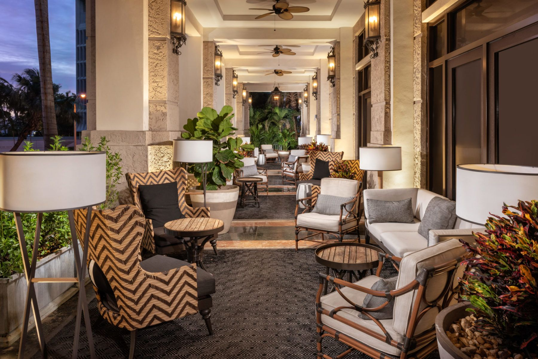 Outside patio with lounge furniture and palm trees at The Commodore